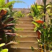 Stair case in Vila do Maio