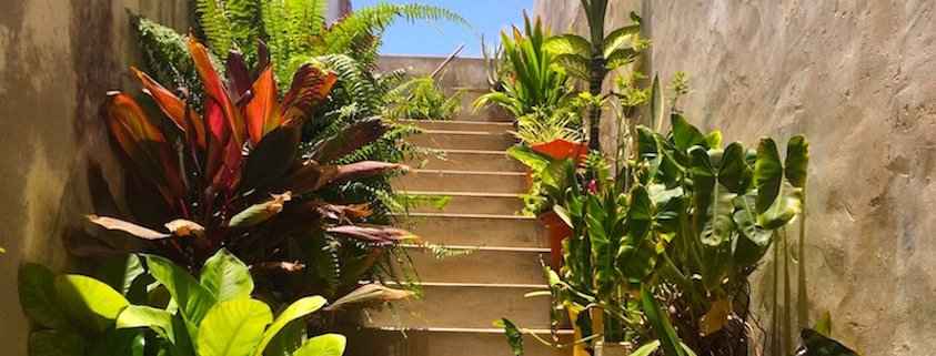 Staircase in Vila do Maio, Cape Verde