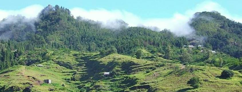 The green hills of Santo Antão, Cape Verde