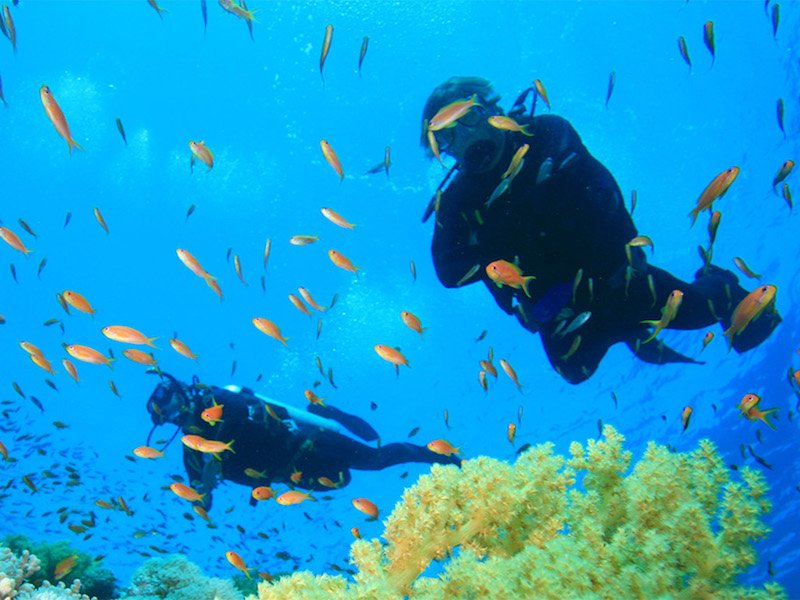 scuba diving maio cape verde