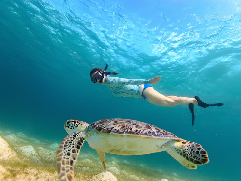 snorkeling maio cape verde