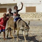 Maio donkey taxi