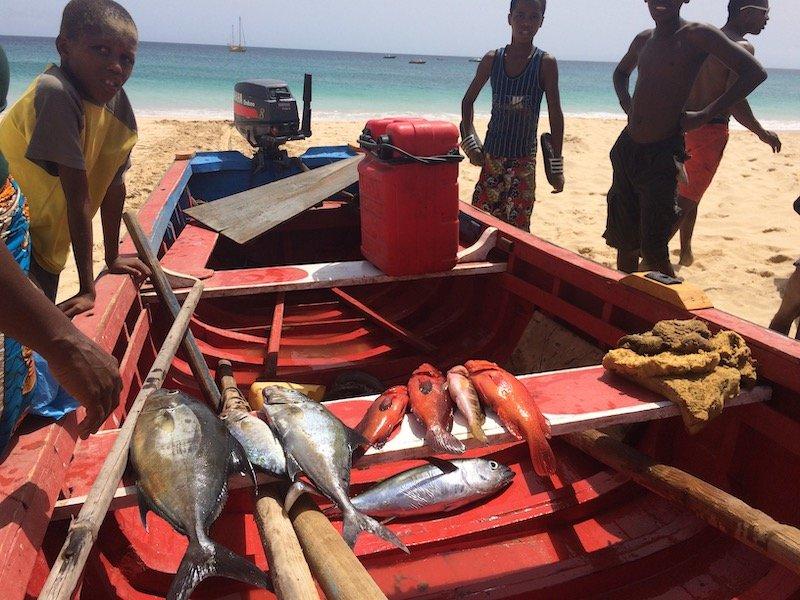 Fishing boat on Maio
